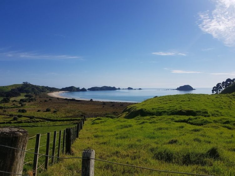 Te Araroa Trail Northland beaches