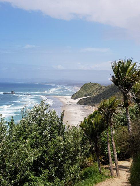 Te Araroa TrailMangawhai Heads Coastal Walkway