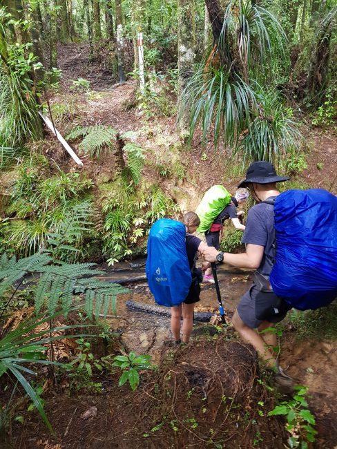 Te Araroa Dome Hill Track