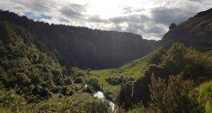 Te Araroa Trail Mangaokewa river track