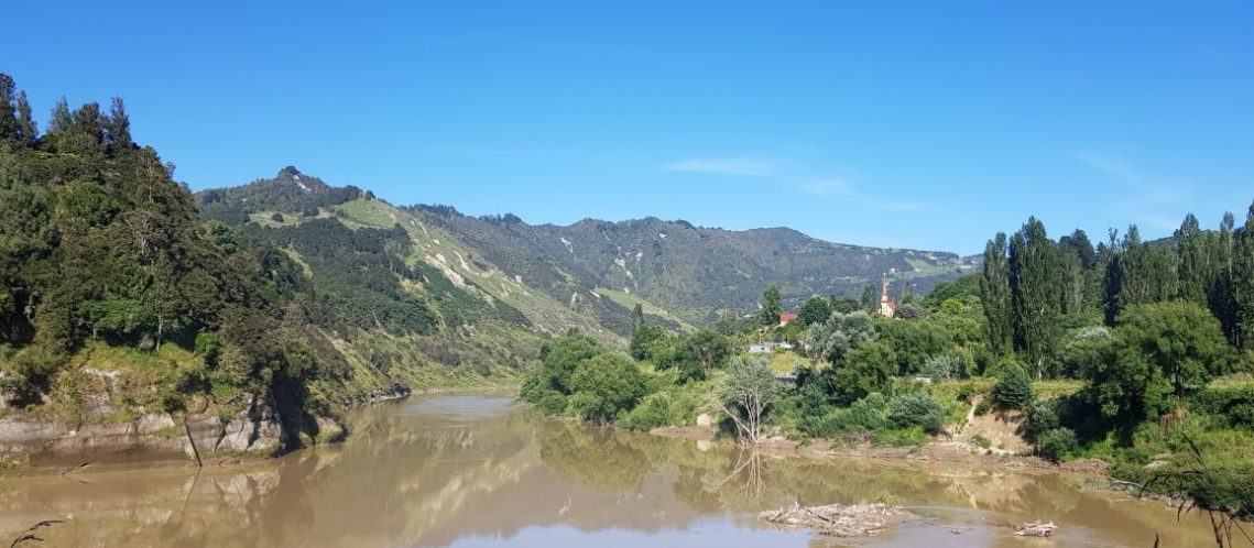 Te Araroa Trail Whanganui River from Pipiriki