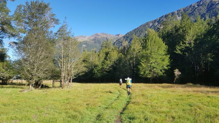 Te Araroa Trail Day 132 - From Locke Stream hut