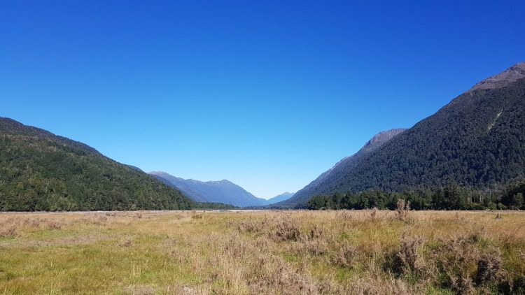 Te Araroa Trail Day 132 - A small section with no river crossings