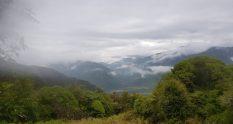 Te Araroa Trail Pukeatua summit track