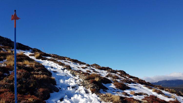 Towards Mount Urchin Trig