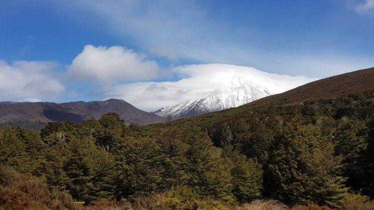 Mount Ngauruhoe from Waihohonu hut