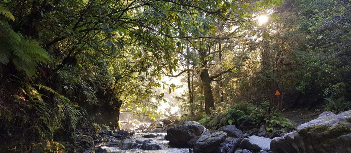 Wairoa river richmond