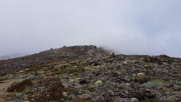 Top Mount Rintoul