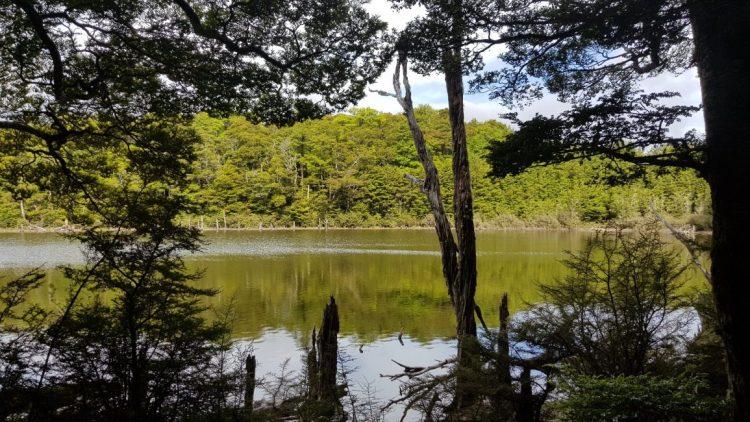 Lake near Tarn hut