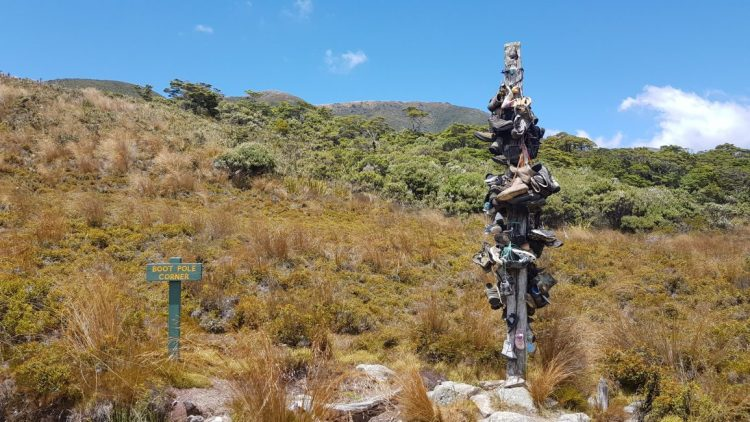 The boot pole - Heaphy Track