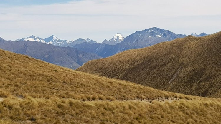 Across the Southern Alps