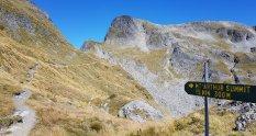 Mount Arthur track kahurangi