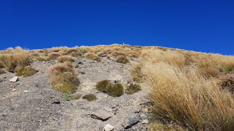 Nearly on the ridge