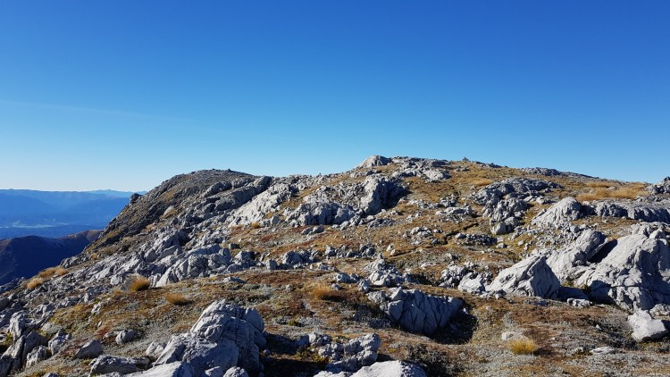 On the plateau towards the summit of Mount Owen