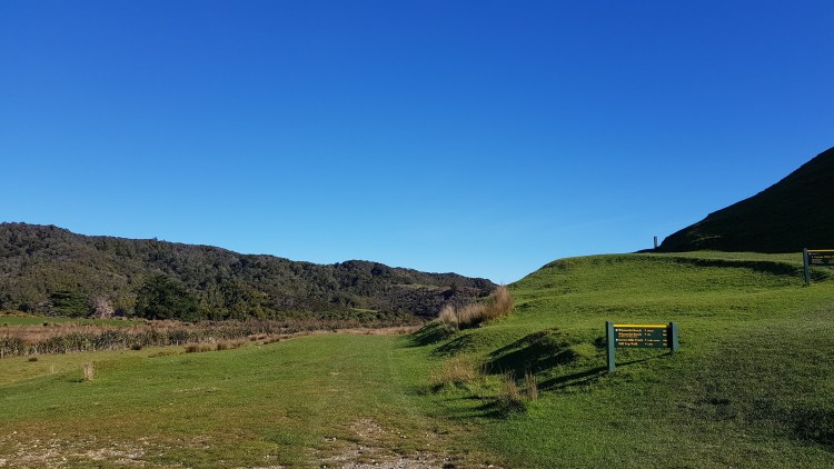 Wharariki Road End up the Puponga Farm Track