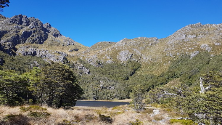 Camp Lake - Kahurangi National Park