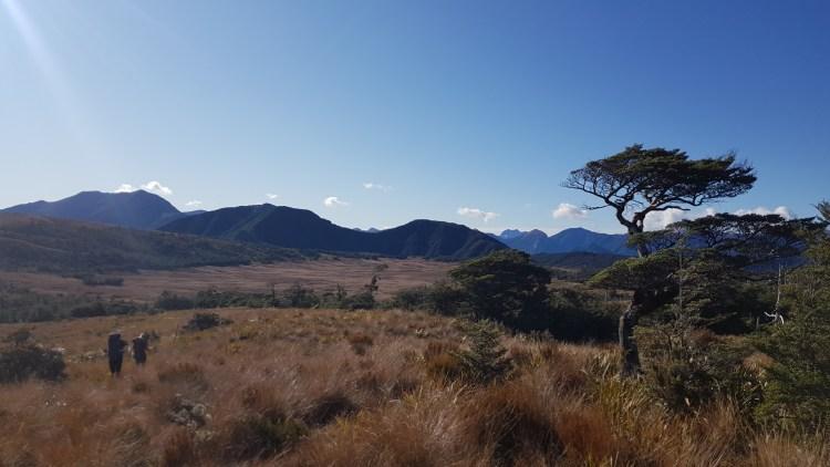 Into the sun on 1000 Acre Plateau