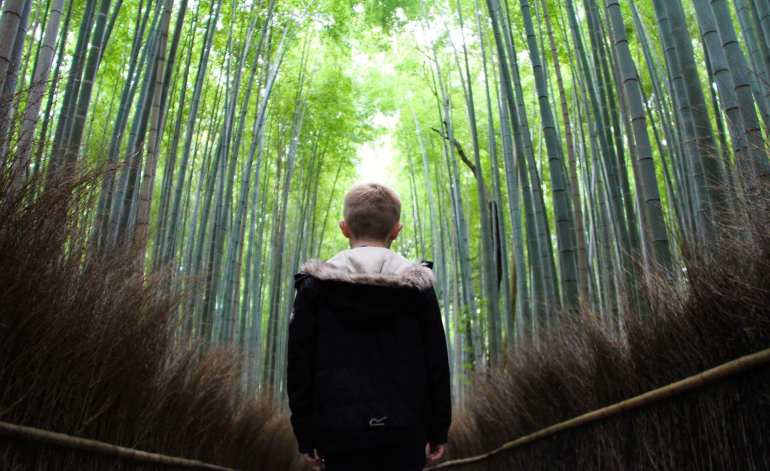Japanese temples with kids