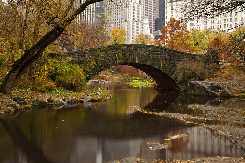 800px-Gapstow_bridge_of_central_park_in_november