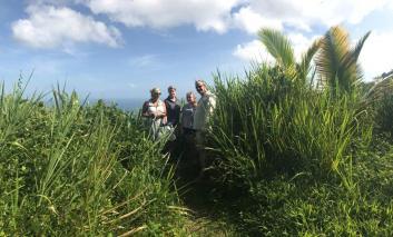 Northern Range Trinidad