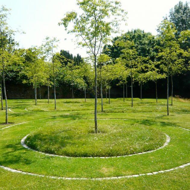 Contoh Taman dengan Area yang Luas
