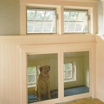 House Pets Ideas House And Home Design