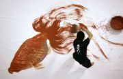 Riusuke FukahoriBiografía Corta - técnicas y obras