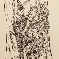 Artist: Zahari Hamidon, Title: Elements of Nature, Medium: Pen and Ink on paper, Year: 2018