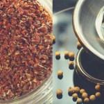A 10 legfontosabb élelmiszer, amivel sikerrel küldhetsz a hajhullás ellen