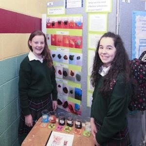Four Tipperary Secondary Schools shine at SciFest event at WIT