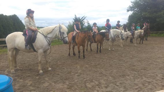 pony camp at Tipperary mountain trekking centre borrisoleigh