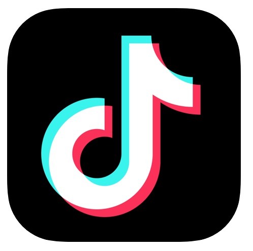 Download videos from TikTok