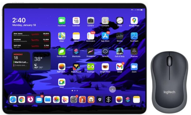 How to Use Mouse or Trackpad with iPad