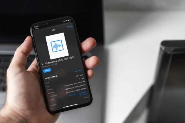 How to Get File Paths on iPhone & iPad Files App