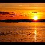 Beautiful Sunset 22