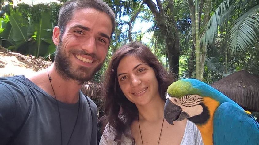 Pappagallo al Parco degli Uccelli in Brasile