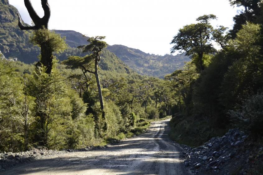 La Carrettera Austral all'interno del Parco Queulat