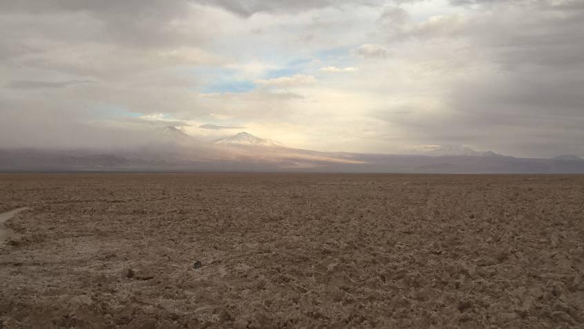 Riserva Nazionale dei Fenicotteri nel deserto di Atacama in Cile