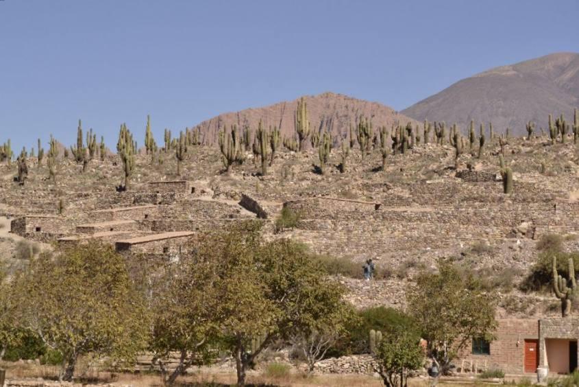 Le mura della fortezza Pucará de Tilcara in Argentina