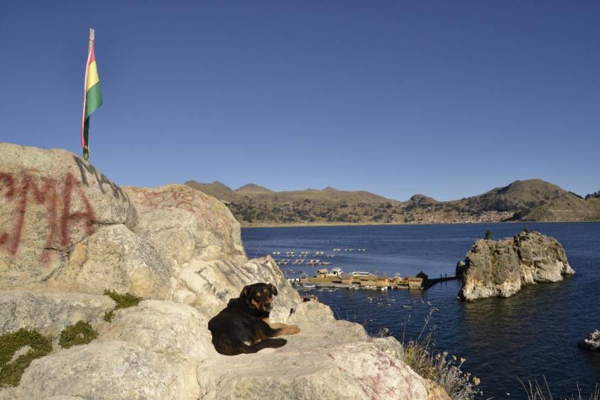 Vista dal Mirador del Inca sulle Isole Flottanti del Chani al Lago Titicaca di Copacabana in Bolivia