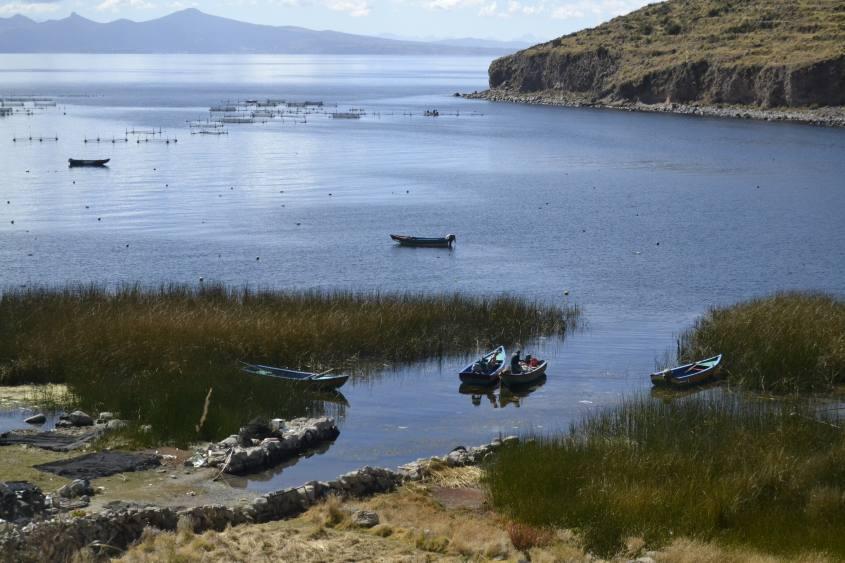 Barche ormeggiate vicino Isole Flottanti del Chani e Lago Titicaca a Copacabana in Bolivia