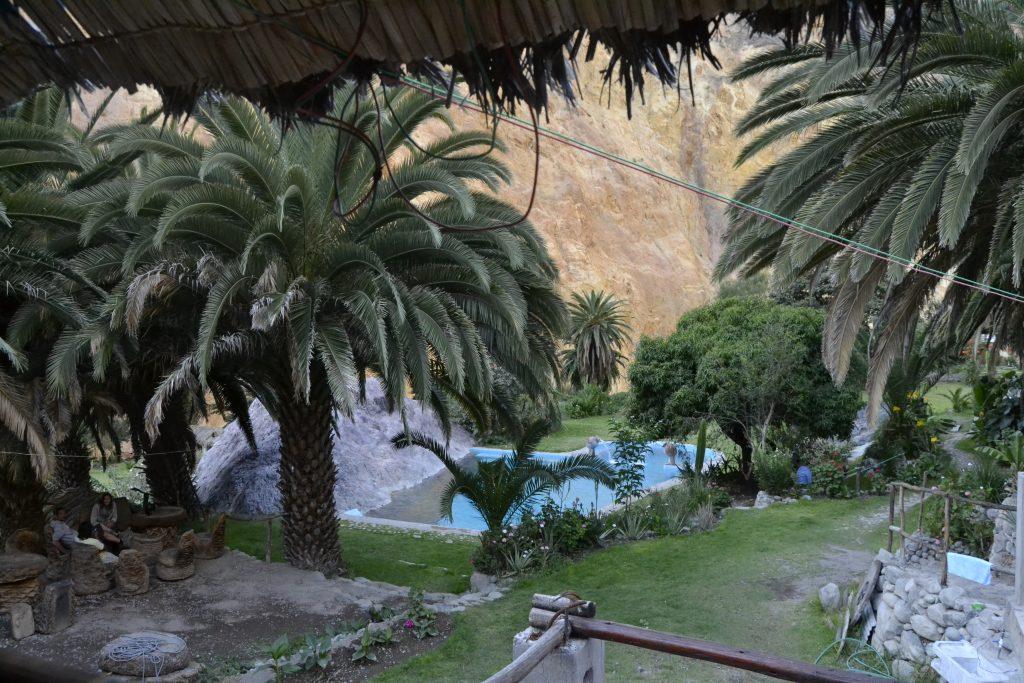 Oasi Canyon Colca