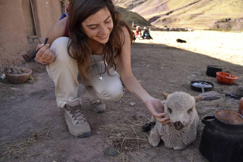 Foto con agnello incontrato durante il trekking alla montagna Vinicunca/Arcoiris in Perù