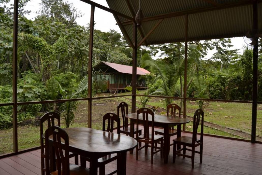 Tarantula Eco Hostel Riserva Tambopata