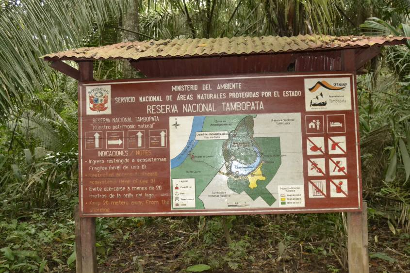 Riserva Tambopata Amazzonia
