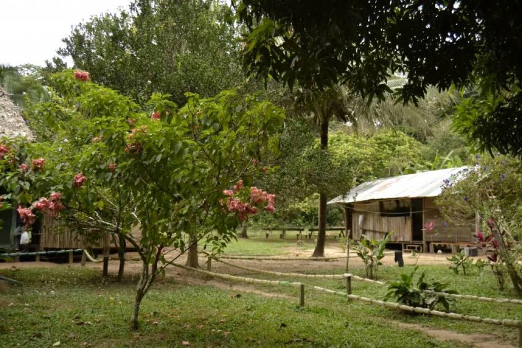 Lodge Riserva Tambopata
