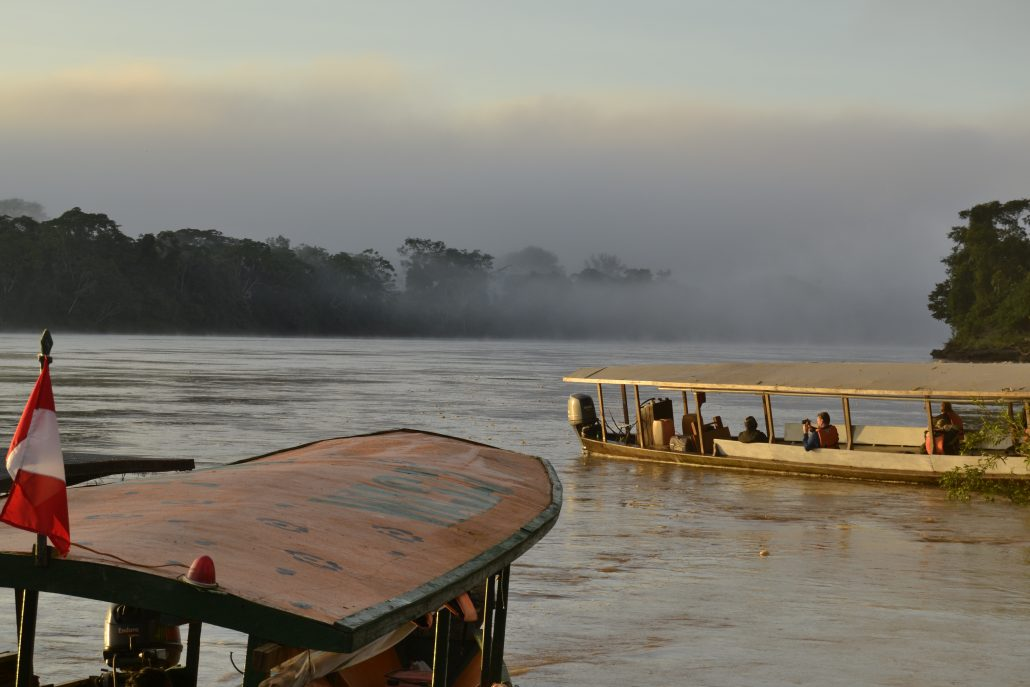 Collpa de Guacamayos nella Riserva Tambopata