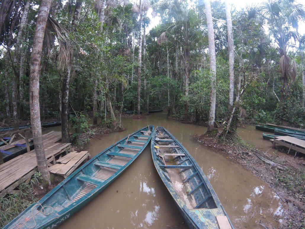 Barche amazzoniche Tambopata