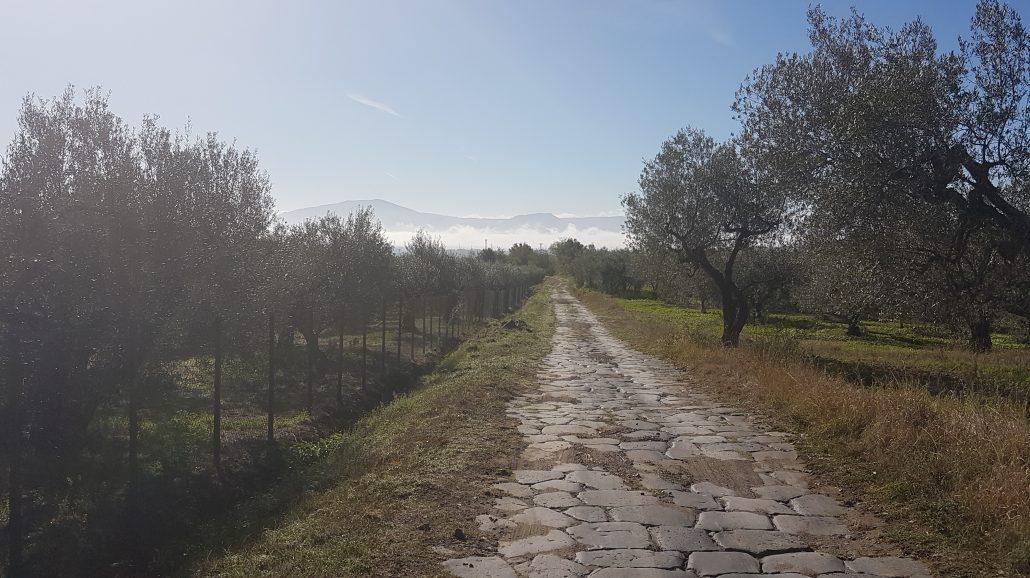 Antica Cassia Via Francigena