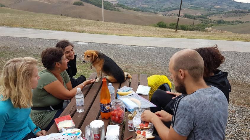 Punto Sosta dopo Castiglione d'Orcia Via Francigena